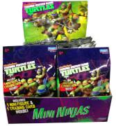 TRL Mini Ninjas